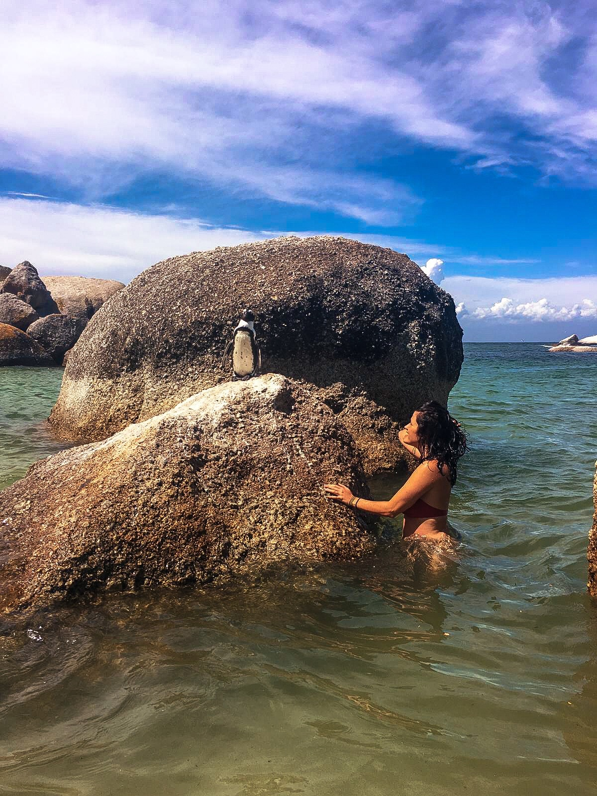 A girl stands next to a boulder in the sea, that has an African penguin in top. It is a sunny day with a blue sky.